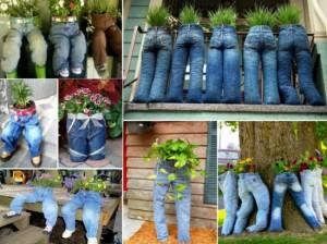 Jeans-Planters4-550x412